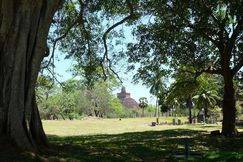 Sri Lanka: Qué ver en Anuradhapura - Lovely Plans