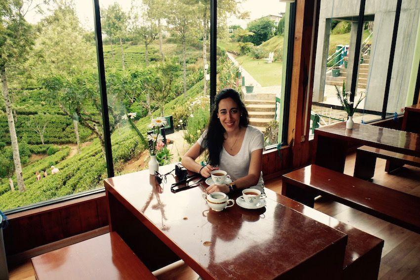 Probando el te ceilandés en la fábrica de te Pedro State - Nuwara Eliya (Sri Lanka)