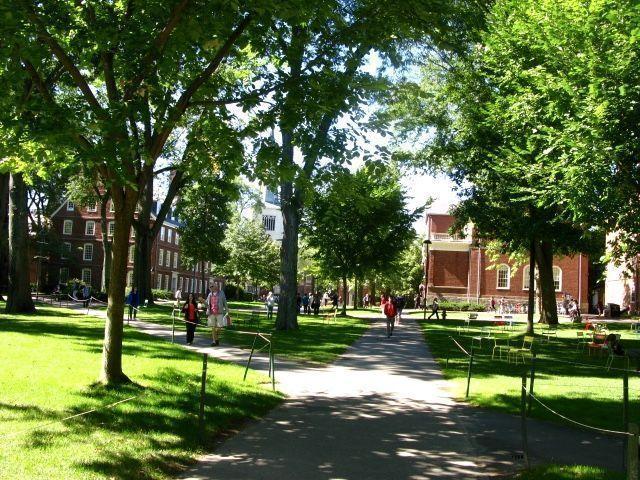 visitar Harvard